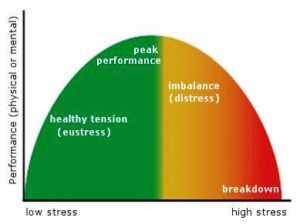 Performance - Stress Curve